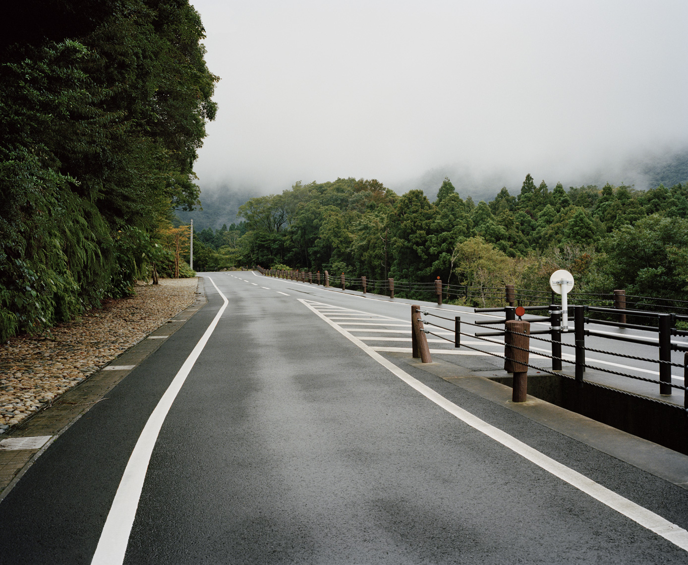 Mountain Road | Yakushima