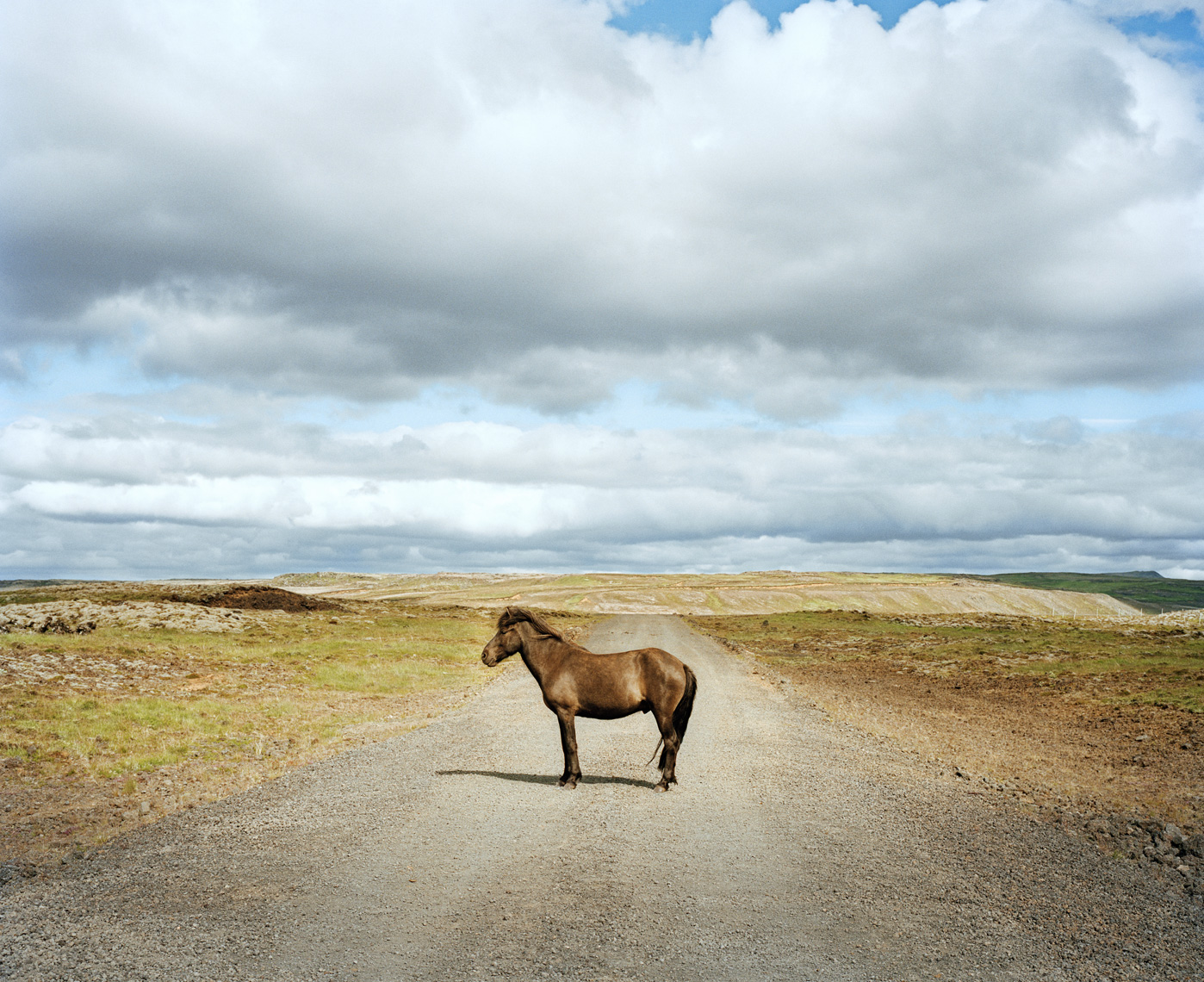 One Horse | Route 35