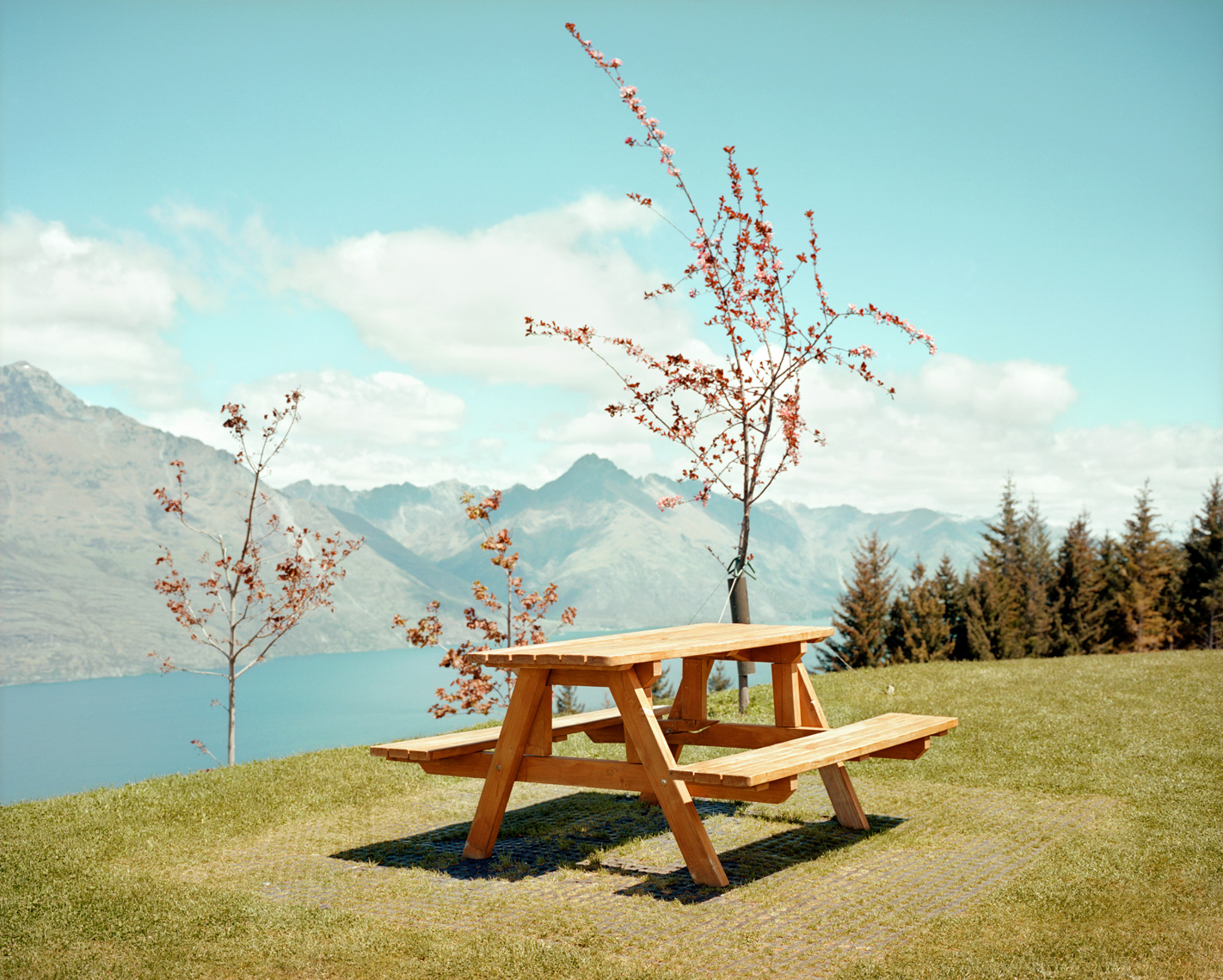 Picnic Table | Queenstown